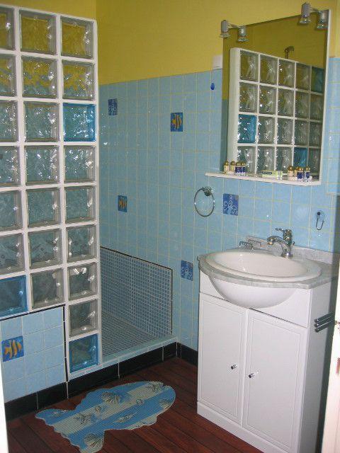 Petite salle de bain avec douche italienne for Photo salle de bain italienne